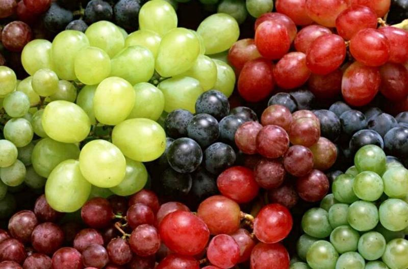 Виноград на зиму: лучшие рецепты для домашних условий на зиму