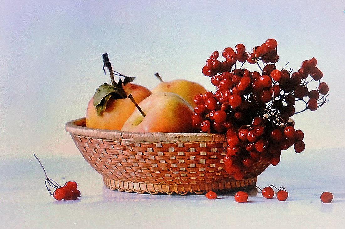 Калина с яблоками