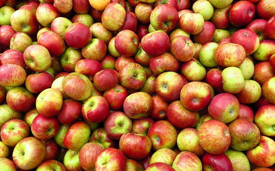 Замораживают ли яблоки в морозилке