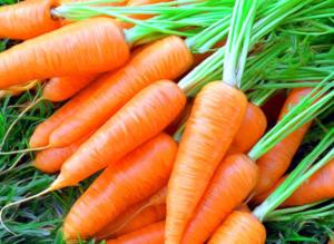 Заготовки на зиму из морковки