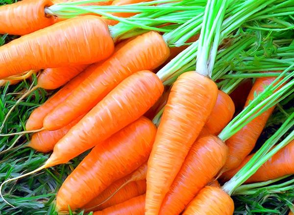 Морковь на зиму – 11 лучших заготовок